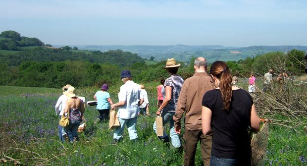 Hedgerow Foraging - Image 2