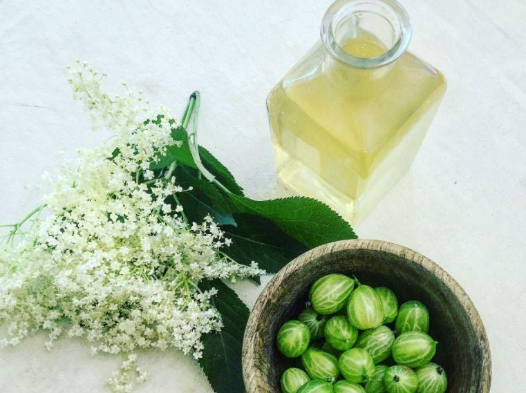 pickle-gooseberry-160631807008978561