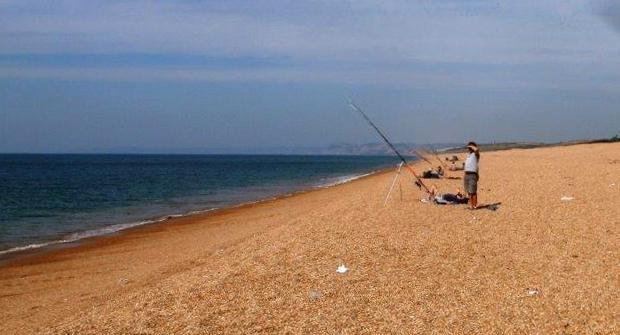 Shoreline Fishing - Image 1
