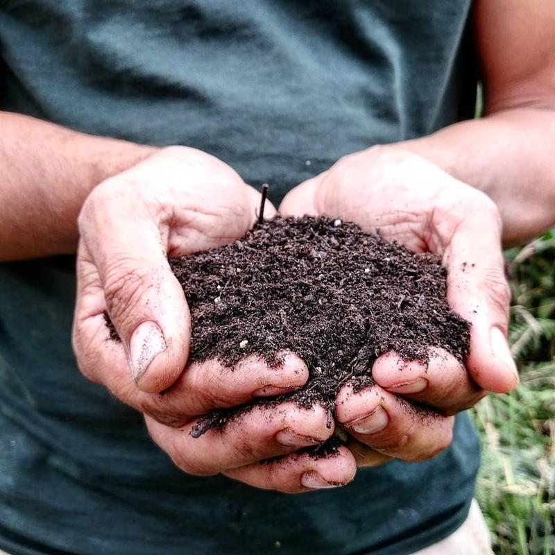soil-hands-garden-earth-