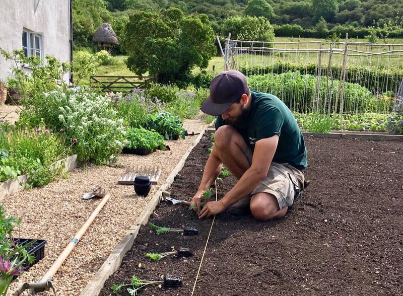 adam-garden-gardening