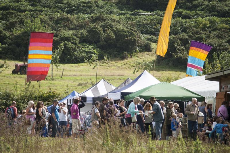 Daytime Festival Ticket - Image 1