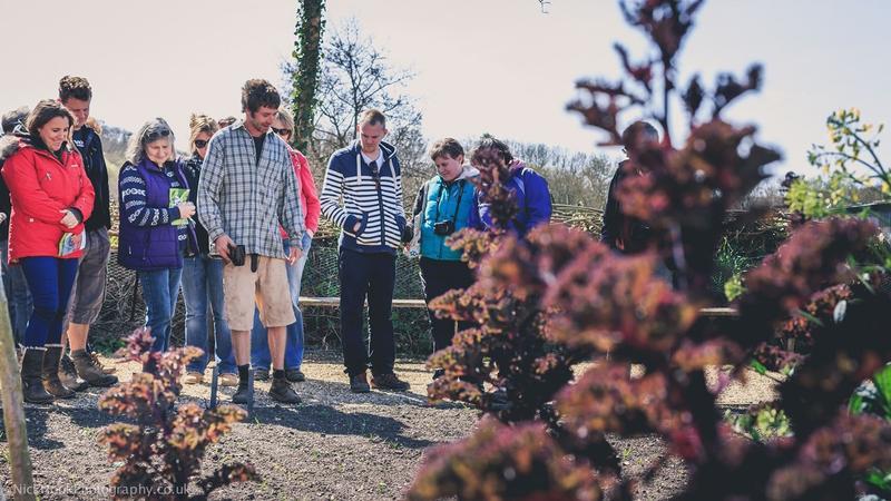 Garden Open Day: Meet the Experts - Image 2