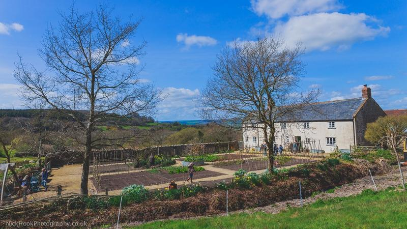 Garden Open Day: Meet the Experts - Image 1