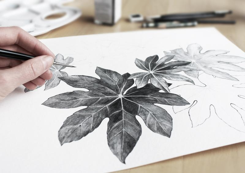 person-drawing-leaves-using-a-pencil-3298835