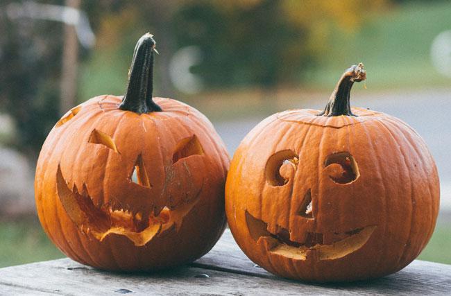 pumpkins-160044652030149051