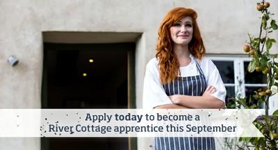 apprenticeship-campaign-blogpost