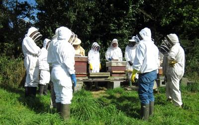east-devon-beekeepers-1