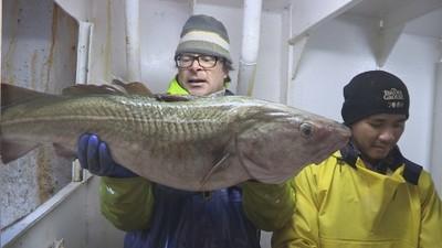 hugh-cod