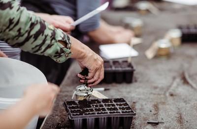 gardening-small