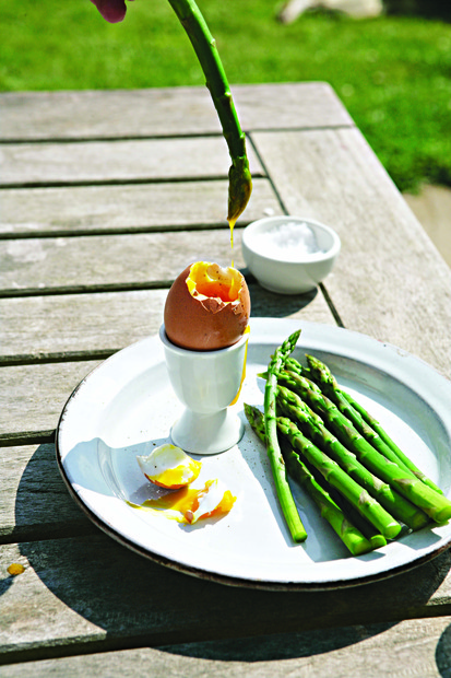 Asparagus soldiers with soft-boiled egg hollandaise
