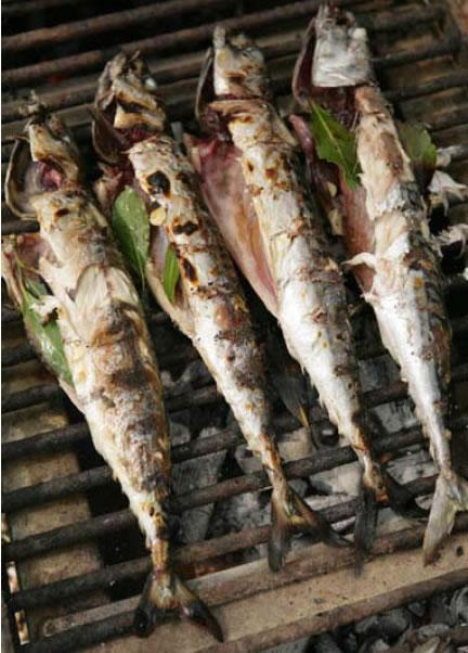 Mackerel barbecued over bay