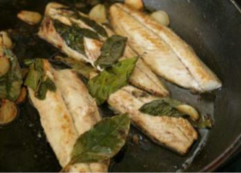 Quick-fried mackerel fillets with garlic and bay