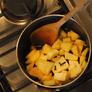 Put the chopped apples and cloves into a pan with 50ml water.